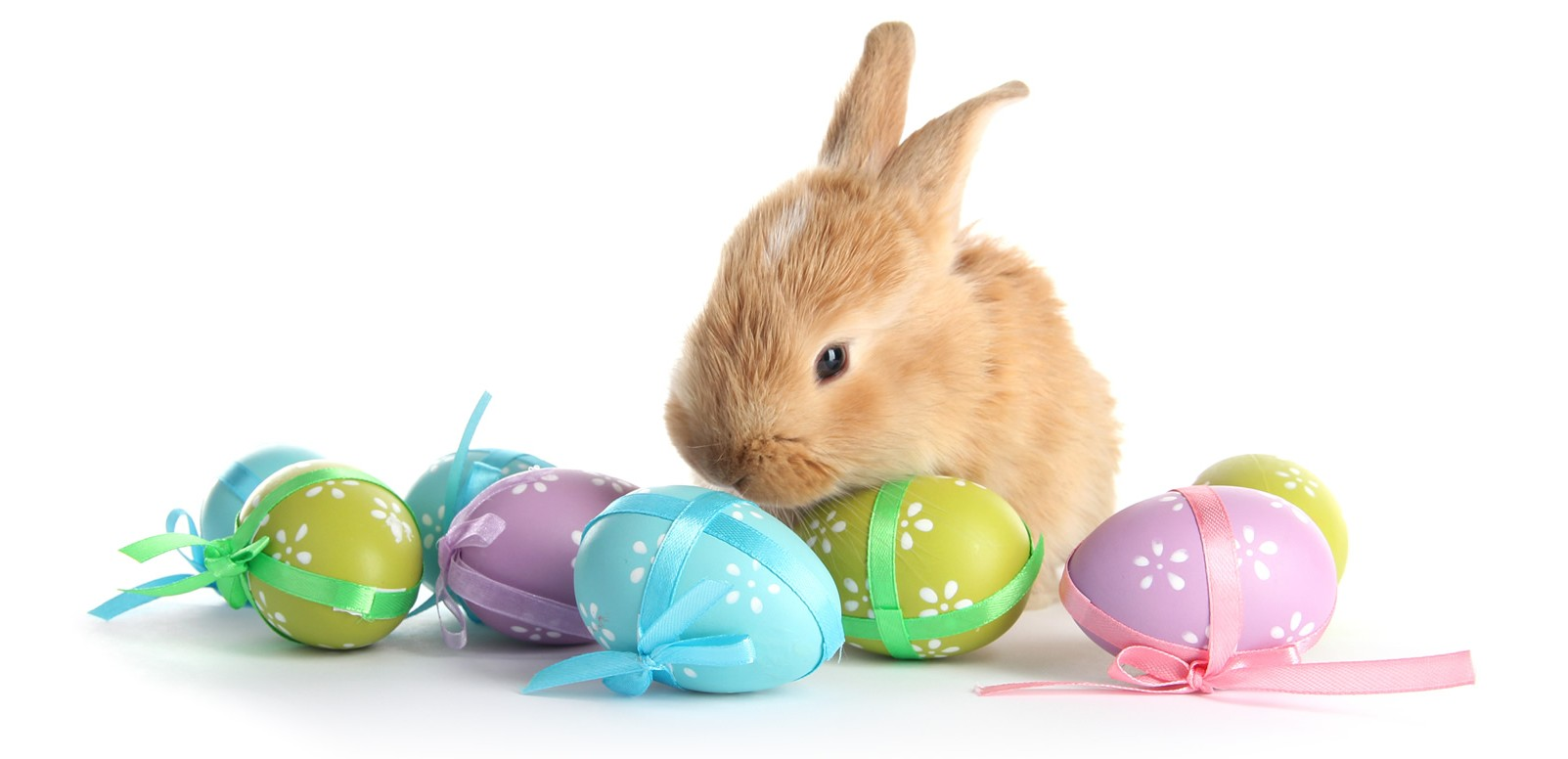 easter in orlando free events orlando tourist tips