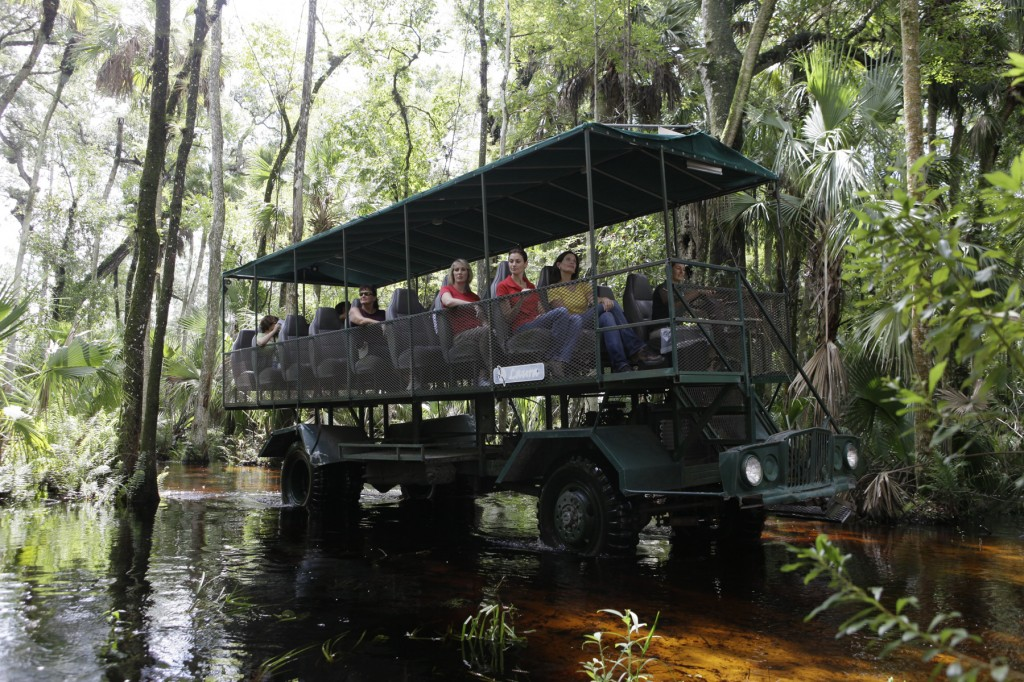 Florida Eco Safaris Coach Tour